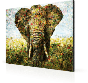 photo mosaic alu-dibond elephant