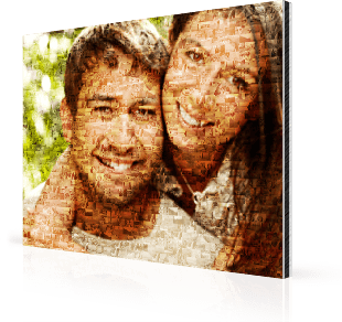 photo mosaic alu pair