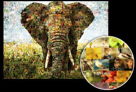 fme_landing_detail_mosaic