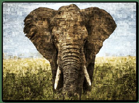 photo mosaic alu dibond top