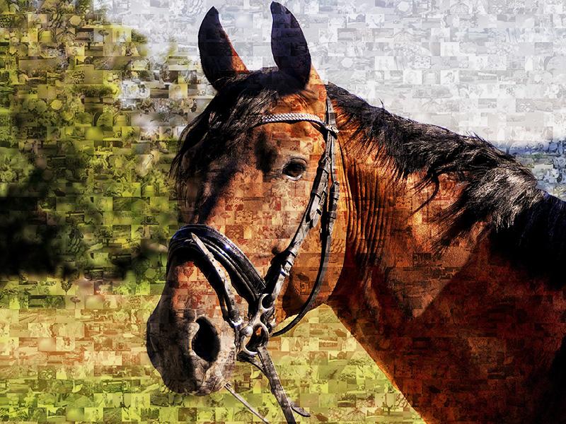 photo mosaic horse